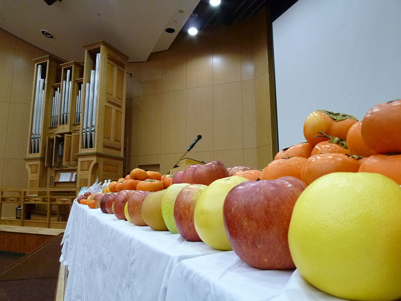 Harvest appreciation worship